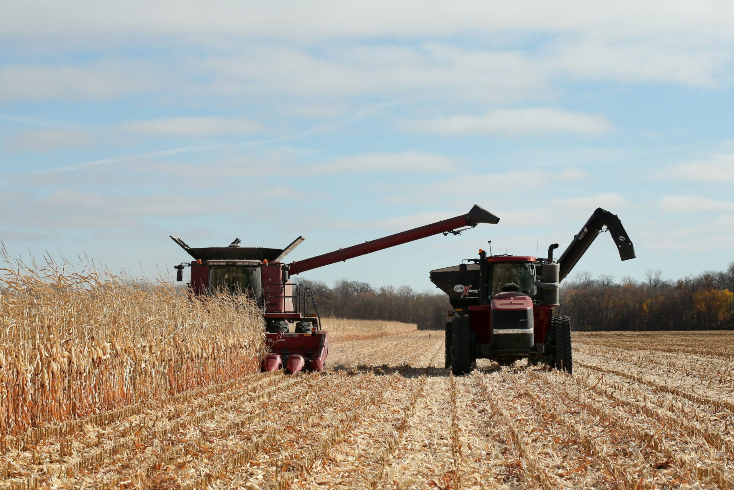 How Will the Surging Grain Prices Impact Farmers?